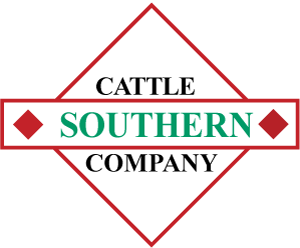 Southern Cattle Company